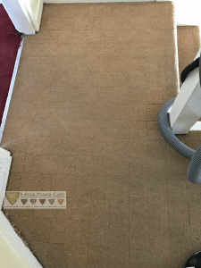 professional carpet cleaners get these results