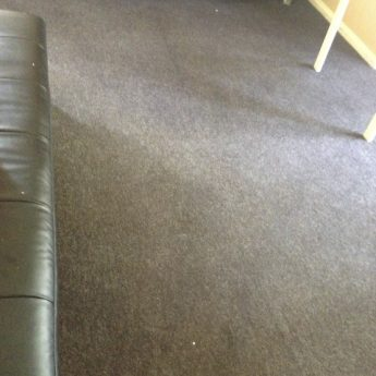 CARPET CLEANERS ORPINGTON